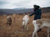 rennes Norvège